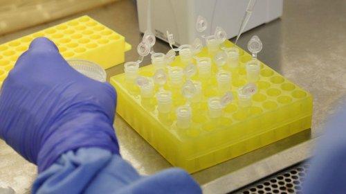 [Brumado e Jequié registram os primeiros casos de coronavírus; sobe para 57 o número no estado]
