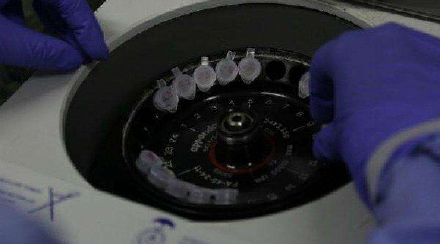 [Ministério da Saúde ampliará para 22,9 milhões total de testes para novo coronavírus]