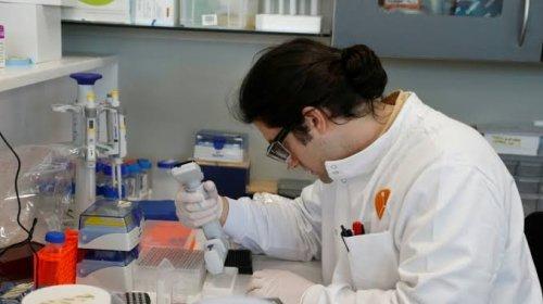 [Vacina contra covid-19 avança na universidade de Oxford]