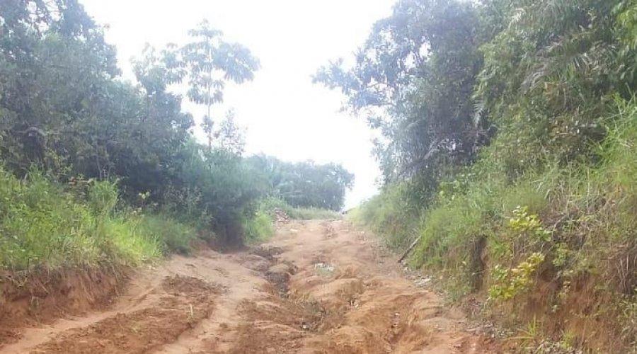 [Moradores do Quilombo Quingoma pedem reforma de estrada na Associação ]