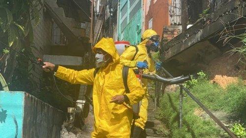 [Ação do Movimento Solidário higieniza as ruas de Pernambués para combater o coronavírus ]