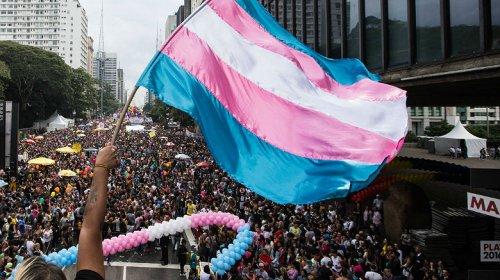 [Pleito de 2020 terá 259 candidaturas de pessoas trans, diz associação]