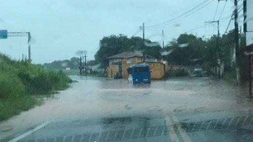 [Video: chuva deste domingo deixa ruas alagadas no bairro de Jardim das Margaridas]