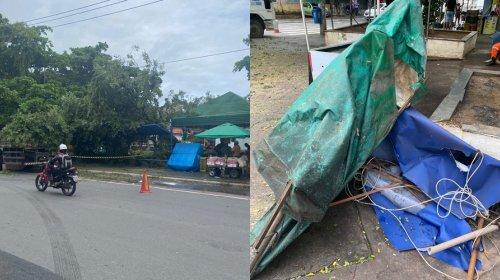 [Veja vídeo: Árvore cai e destrói ponto de ônibus na praça Arthur Lago em Pernambués]